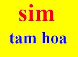 sim-tam-hoa